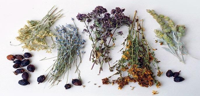 При хроническом колите кишечника можно использовать отвары трав, для облегчения состояния, но эффективный метод лечения может назначить только врач