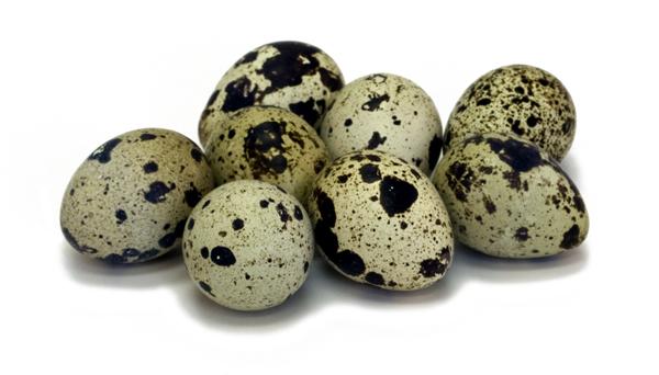 Сырые перепелиные яйца при панкреатите