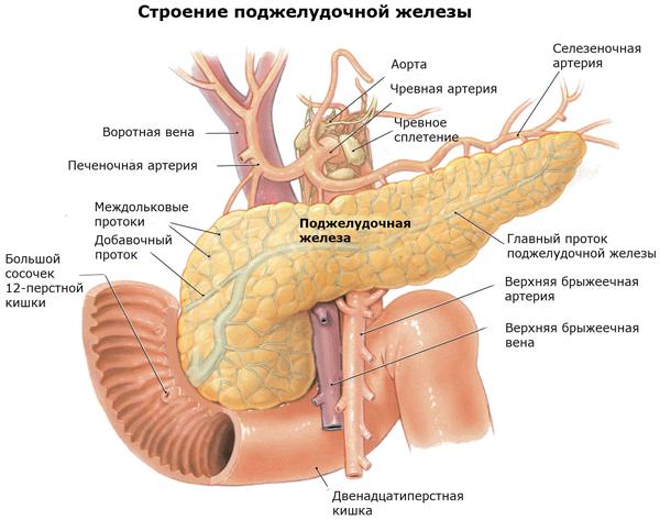 Cимптомы воспаления поджелудочной железы