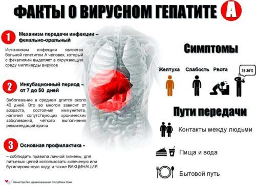 Симптомы гепатита у мужчин и женщин, диагностика гепатита