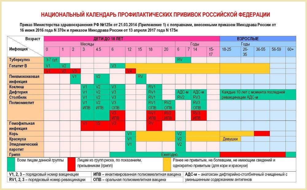 Календарь прививок РФ